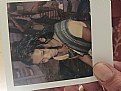 Picture Title - Polaroid