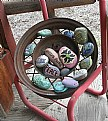 Picture Title - PAINTED ROCKS