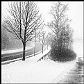 Picture Title - **Crossing Winter**