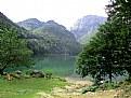 Picture Title - Lago del Predil3