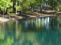 Picture Title - Pond at Dog Park