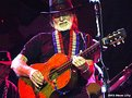 Picture Title - Willie Rocks!