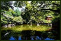 Picture Title - Japanese garden #7