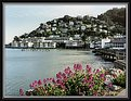 Picture Title - Sausalito, small city across SanFrancisco